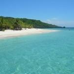 Tra delfini ed iguane sull'isola di Roatan