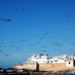 Essaouira, città del vento e del Gnaoua