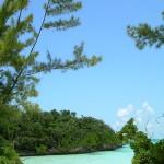 Tra squali e tartarughe nelle isole Abaco, Bahamas