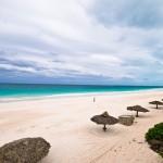 Bahamas: le spiagge rosa di Eleuthera e Harbour Island