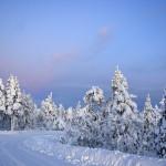 In Lapponia sulle tracce di Santa Klaus