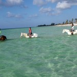 Grand Bahama: parchi naturali e spiagge incontaminate