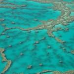 Australia, alla scoperta della Grande Barriera Corallina