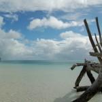 Fraser Island (Australia), l'isola di sabbia più grande del mondo
